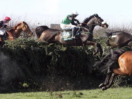 Steeplechase horse racing for Steeple chase