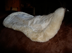 A sheepskin half pad can provide extra protection to your horse's back.  Sheepskin is a great choice because it also wicks moisture away and keeps your horse more comfortable.