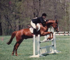 Bogie was a bold and tidy jumper over stadium fences but a complete chicken when it came to cross country jumps.