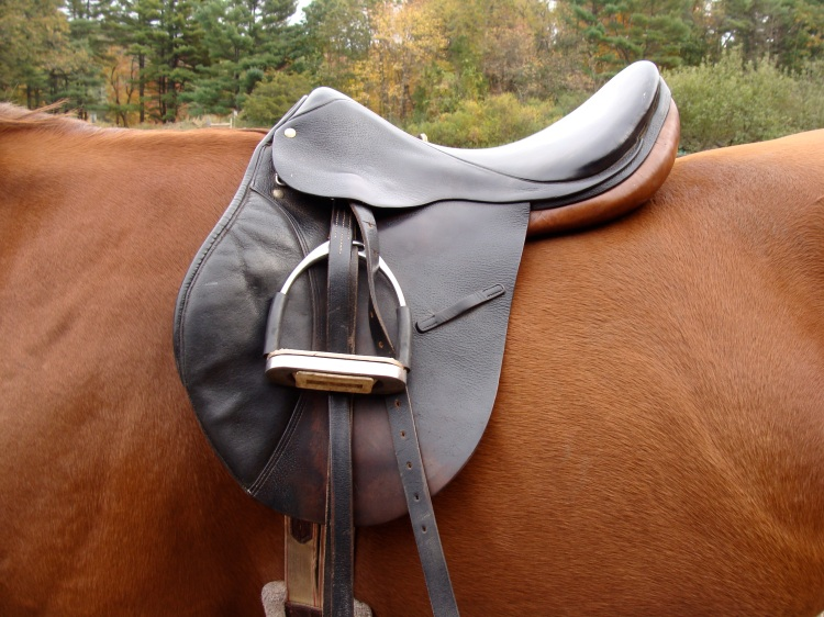 This is a classica All Purpose saddle.