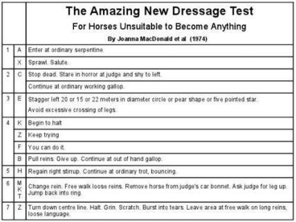 Dressage Test for the Rest of Us