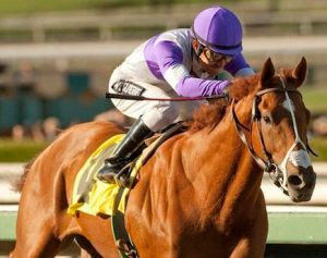 Kentucky Derby and Preakness Winner I'll Have Another was scratched from the Belmont Stakes and retired from racing.