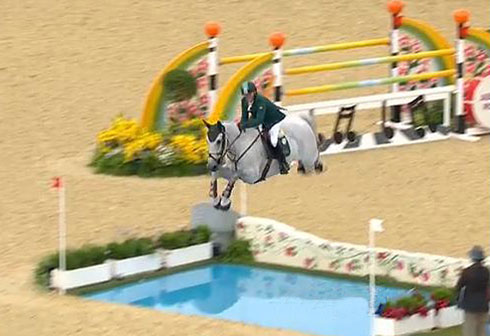 Olympic horse jumping height