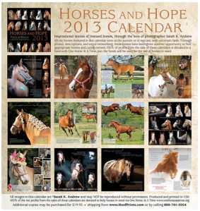 When you buy a Horses and Hope Calendar you help to support the