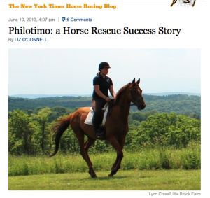 An OTTB Success Story