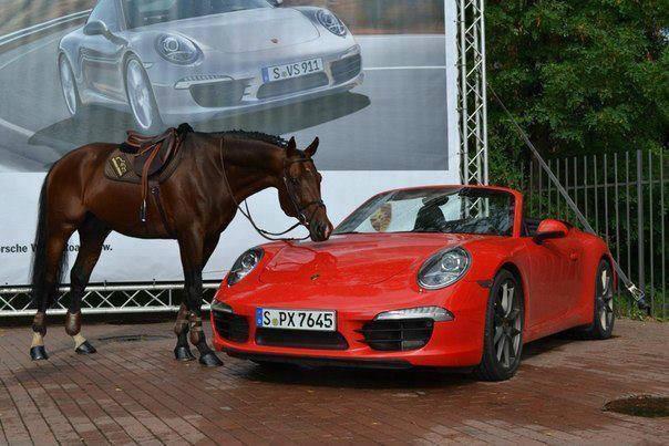 horse racing car