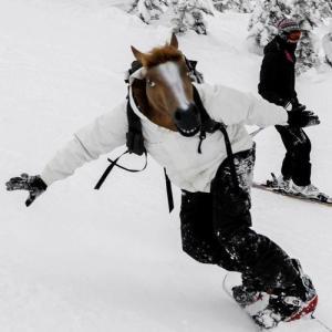 horse skiing
