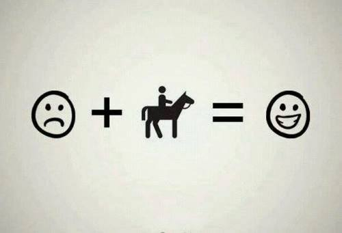 horse equals happiness