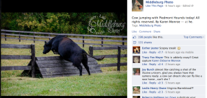 Click on the photo to go to Middleburg Photo's Facebook page.