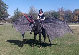 Horse wearing wings