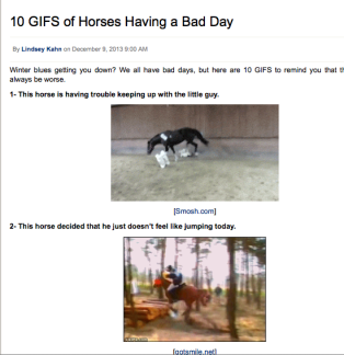 10 horse gifs that will make you smile