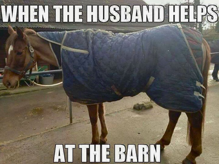 Im Sure Weve All Had Non Horse People Offer To Help At The Barn And Sometimes Results Can Make You Laugh However Certain My Husband Would Not
