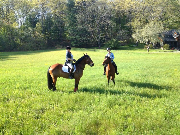 This ride was from a few days ago, but we  passed through this field, too. Most of the landowners in town are welcoming to equestrians.
