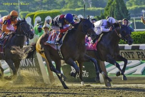 Tonalist, Joel Rosaria up, won the Belmont Stakes.
