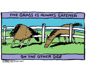 How To Overcome Grass Is Greener Syndrome In Dating