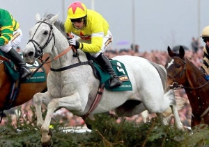Neptune Collange over the water jump at Aintree.