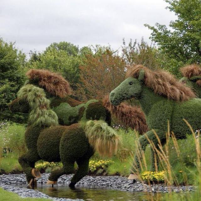 Topiary horses