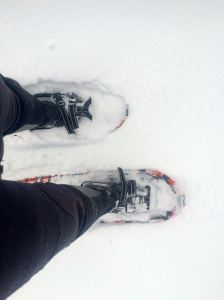 snowshoes