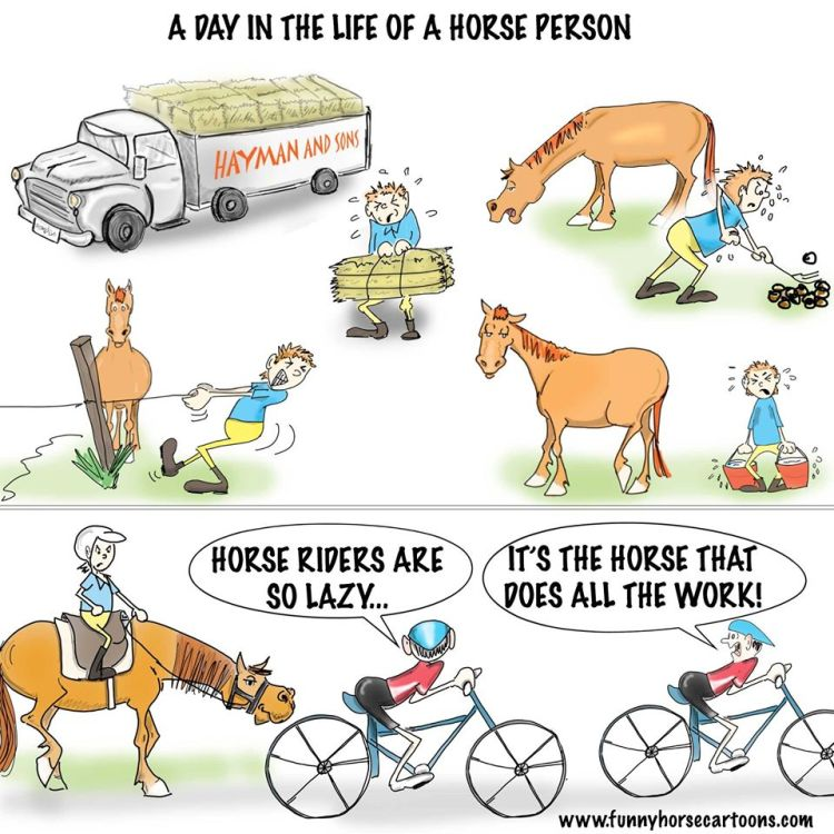 Life of a horseperson