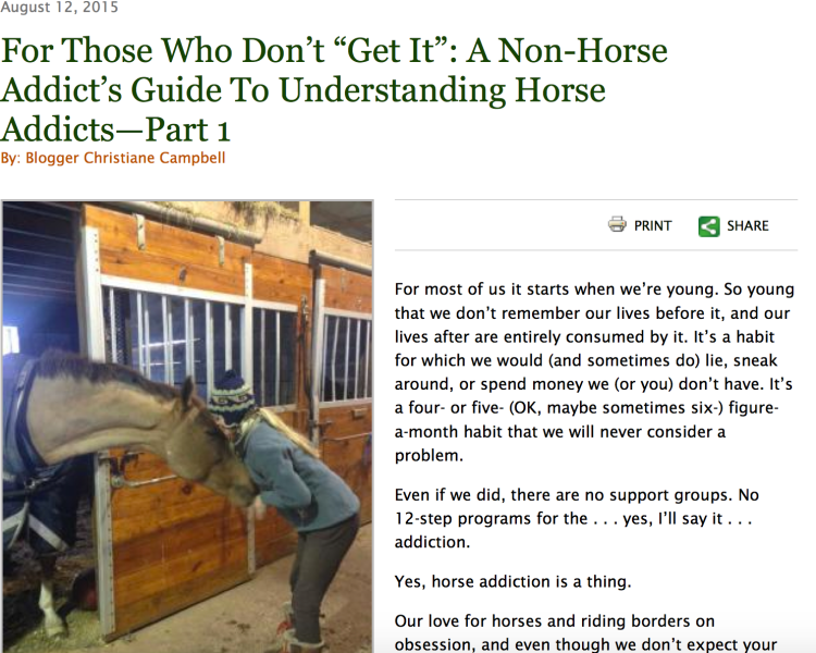 Horse addicts Guide