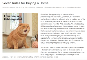 Seven Rules for Buying a Horse
