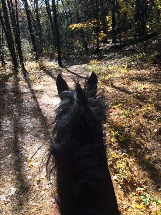 remote trails