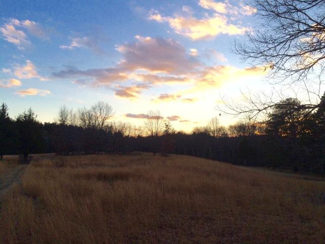 Winter evenings