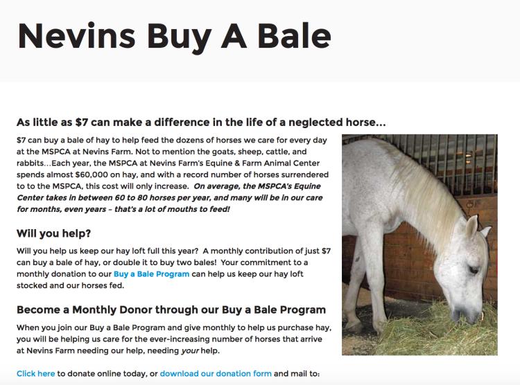 Nevins Farm Buy a Bale