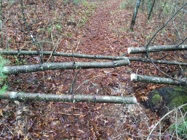 blocking trails