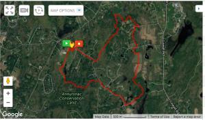 Strawberry Hill Rad