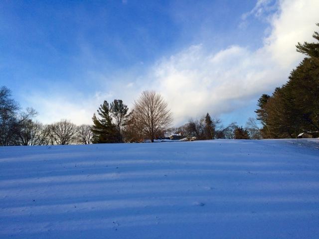 Blue Snow