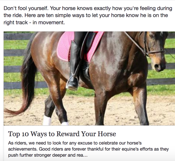 Reward your horse