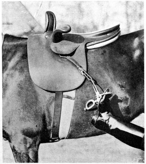 Copes Safety Stirrup
