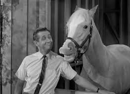 Mr. Ed talking