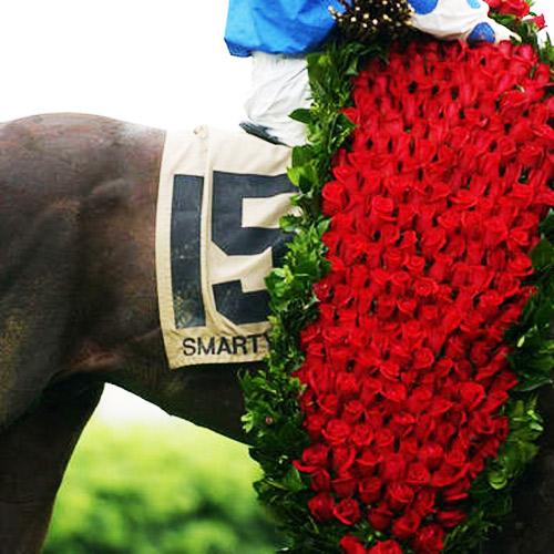 Derby Roses