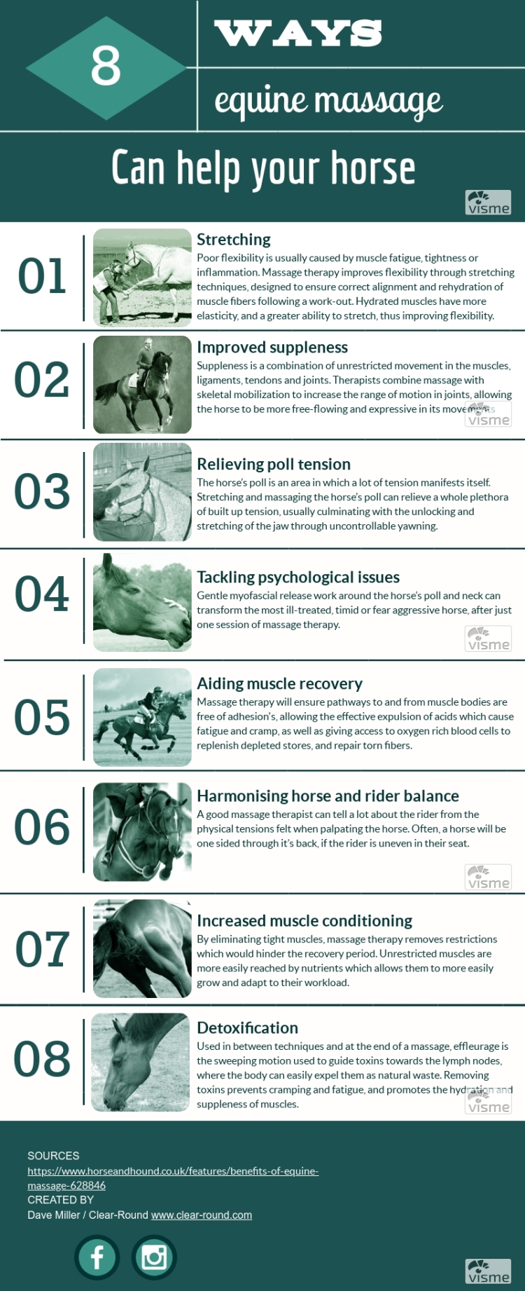8 Benefits of Equine Massage