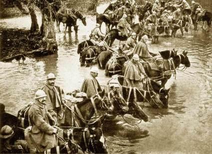Verdun War Horses