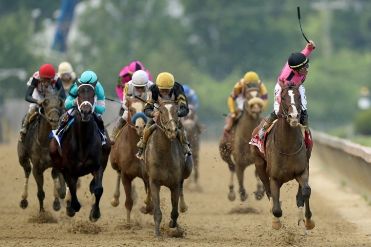 War of Will wins the Preakness
