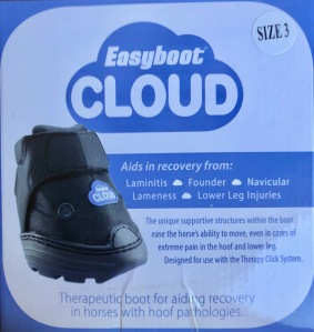 Easy Boot Cloud