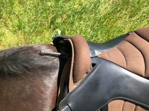 Ghost saddle clearance