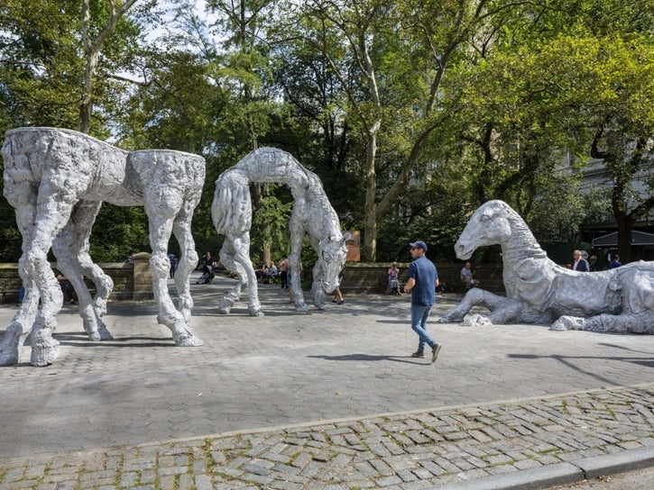 The Horses Installation