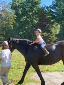 large pony rides